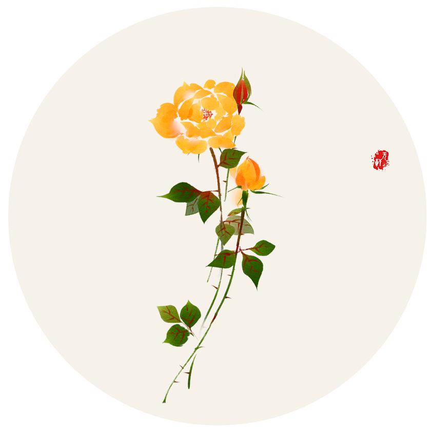 (6)黄玫瑰30x30